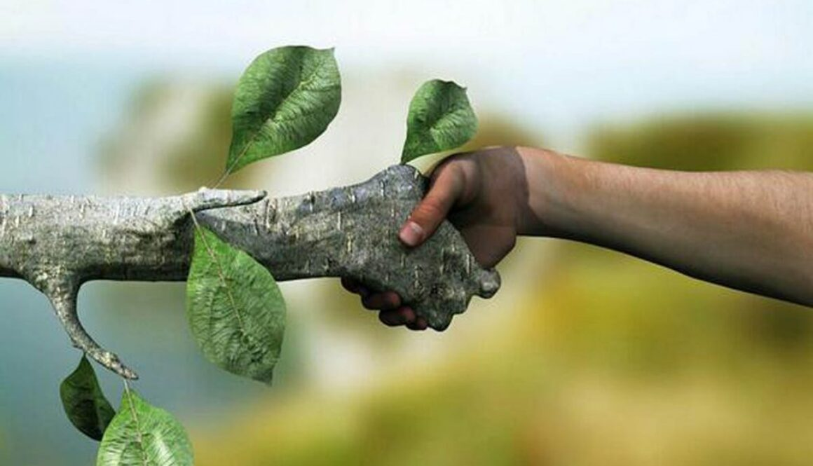 human-and-tree-shaking-hands1200